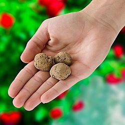 Magnet 3Pagen 3 kouzelné kuličky se semeny