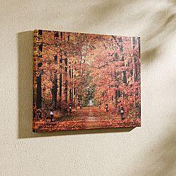 Magnet 3Pagen LED obraz