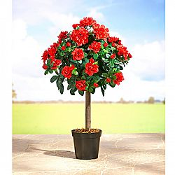 Magnet 3Pagen Stromek s květy